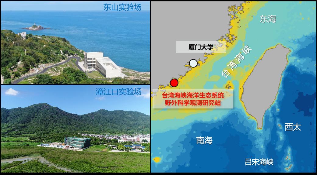 我校台湾海峡海洋生态系统野外科学观测研究站入选国家野外科学观测研究站择优建设名单